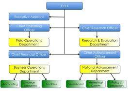 Cfo Organizational Chart Board Of Directors Great World Saver