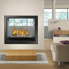Napoleon HD81 See-Thru Gas Fireplace | Fireplace | Pinterest | Gas ...