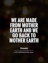 Earth Quotes Interesting 48 Beautiful Earth Quotes And Sayings