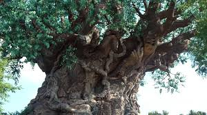 The Tree of LIFE and its branches