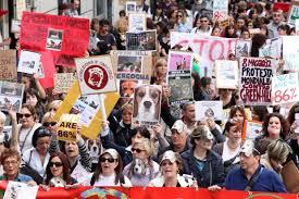 manifestazione contro vivisezione