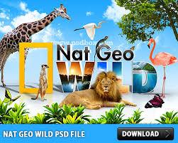 Psd Download Nat Geo Wild Psd File At Downloadfreepsd Com