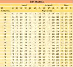 Ace Bmi Chart 19 Paradigmatic Muscle Mass Index Chart