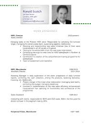 Excellent Resume Cv Example 13 English Cv Sample Resume Example