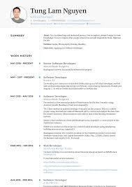 Developer Resume Samples Templates Visualcv