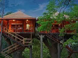 Worldu0027s Best Treehouse Hotels  Travel  LeisureTreehouse Accommodation