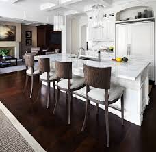 kingsway home contemporary kitchen toronto lisa petrole photography