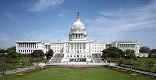 Image result for washington dc free images