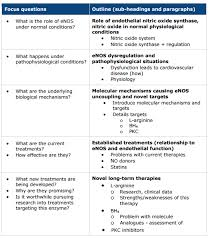 Literature Review Outline Researching And Writing A Literature Review Biomedical