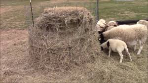 how to make a round bale hay feeder
