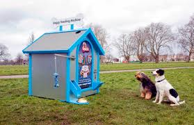 Dog Vending Machine Interesting Vending Machine For Hungry Dogs Vital Pet Health Ask The Experts