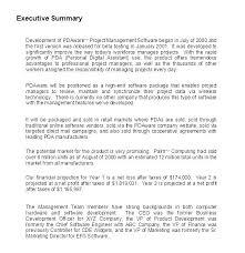Example Summary For Resume Resume Summary Template Executive Summary