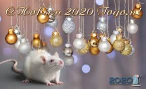 Картинки по запросу картинки анимация год мыши