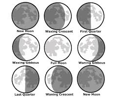 Lunar Phase Chart Moon Observation Chart Hos Ting