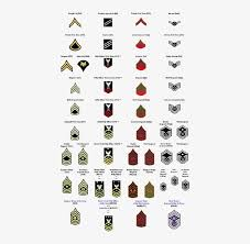 Military Insignia Chart Army For Rank And Precedence Within The Army Specialist