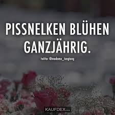 Pissnelken Blühen Ganzjährig Words Typography Prints Lustige