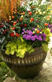 Best 25 Fall Planters Ideas On Pinterest  Outdoor Fall Flowers Container Garden Ideas For Fall