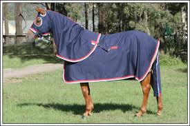cotton drill rug only