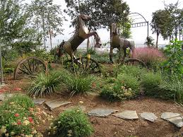 Small Picture Drought Tolerant Landscaping