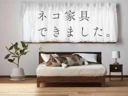chic cat furniture. Fine Cat A Superchic Collection Of Cat Furniture By Japanu0027s Okawa Kagu In Chic Cat Furniture R
