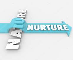 nature nurture in psychology simply psychology edu essay