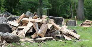 Best Firewood Chart Black Locust Firewood How Good Is It Compared To Other Wood