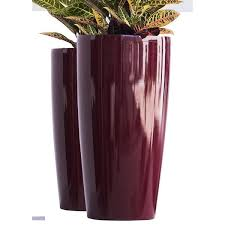plant care soil accessories 3 x red