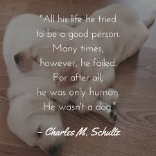 Dog Quotes Unique Dog Quotes We Rounded Up The Best Of The Best