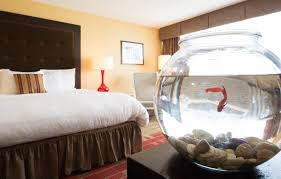 Nashville Hotels With 2 Bedroom Suites Executive Hotel Rooms In Nashville The Executive King Hotel