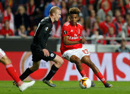 Gedson Fernandes: Profile of Portuguese Benfica prospect