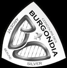 """Résultat de recherche d'images pour """"medaille burgondia argent"""""""