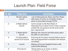 Launch Plan Without Cannibalization The Existing Product Mix