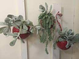 Small Picture Living Wall Portraits Plantopia Interior Plant Service Art Built