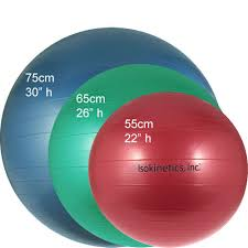 Exercise Balls The Ultimate Guide Top Me