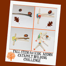 A Team Of Engineering Students Is Designing A Catapult Fall Stem Challenge For Kids Building An Acorn Catapult