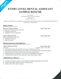 Entry Level Resume Format Samples Example Accounting Sample
