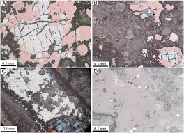 Sulfide Minerals Photomicrographs Of Sulfide Minerals A Reflected Light Image