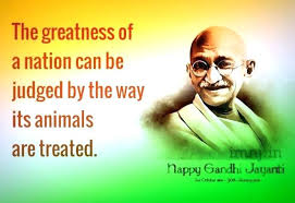 Famous Gandhi Quotes Awesome Famous Gandhi Quotes Packed With To Frame Stunning Famous Gandhi