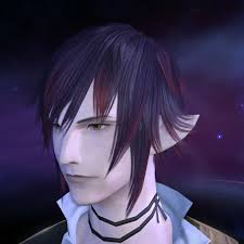 Kanade Aoi 日記素敵エレゼン様紹介番外編 Final Fantasy Xiv
