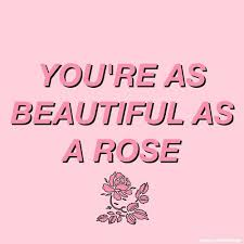 Pink Beauty Quotes Best Of 24 Best Allura Images On Pinterest Backgrounds Everything Pink