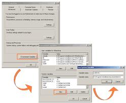 setting environment variables