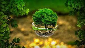 Green Environment Wallpaper Hd