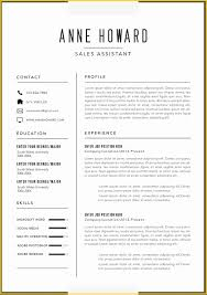 Free Modern Resume Templates Microsoft Word Latter Example Template