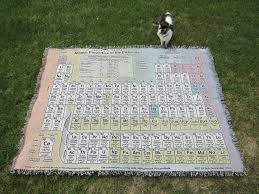 cat with periodic table rug