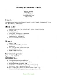 Example Of Business Resume Newest Company Resume Model Sales Manager Resume Example Business 60