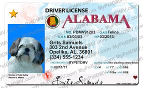 Alabama License Alabama Pet Pet Id