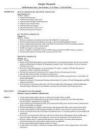 Program Of Events Sample Training Associate Resume Samples Velvet Jobs