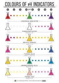 In This Unit We Did A Titration Lab Where We Used