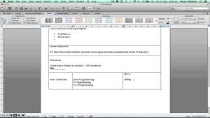How To Make Create Write A 2 Page Cv On Microsoft Word On A Mac