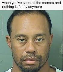 Rip Tiger Woods | Funny video memes, Memes, Funny pictures